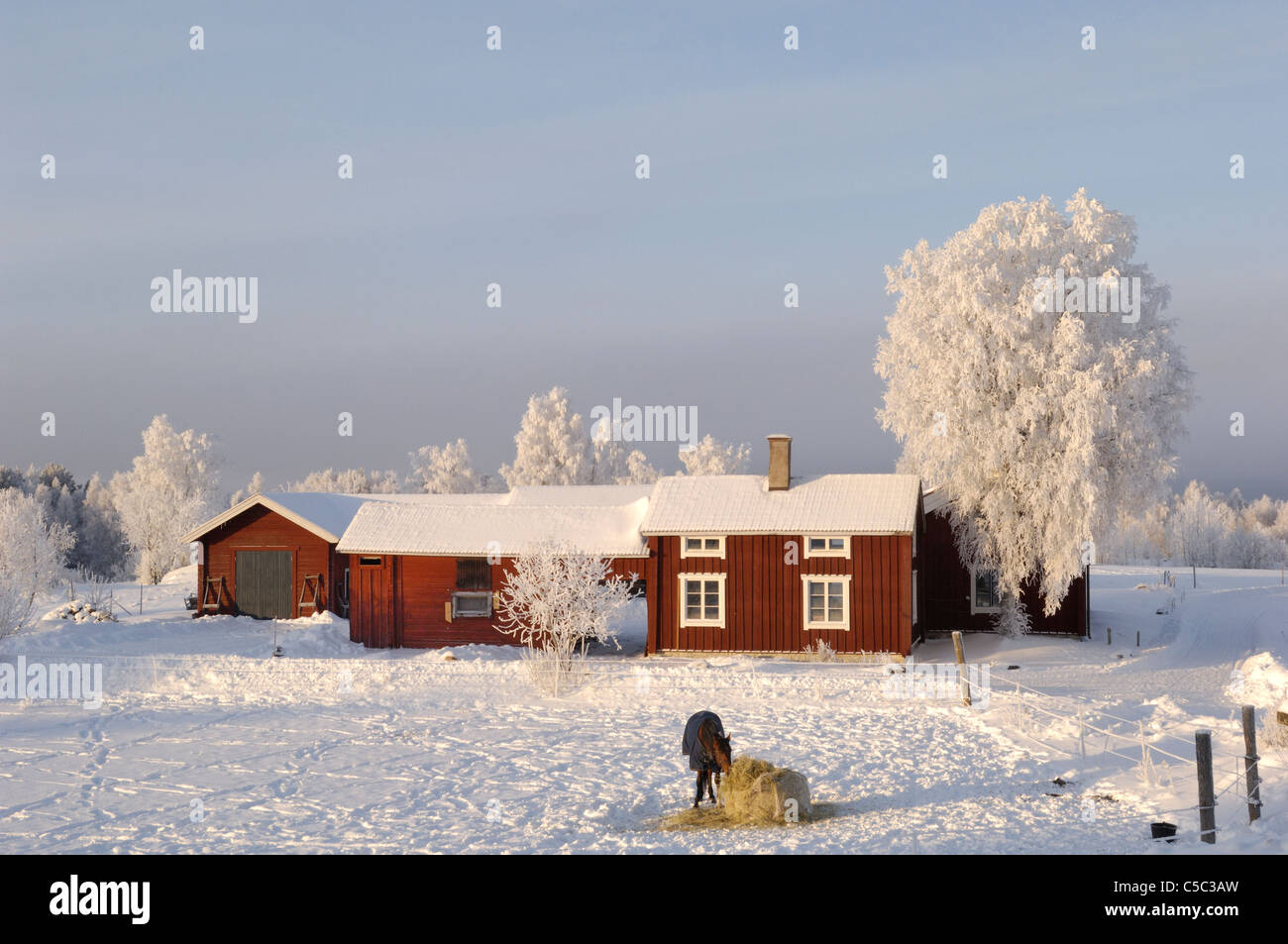 Wintry farm at the backyard of a red cottage in Dalarna - Stock Image