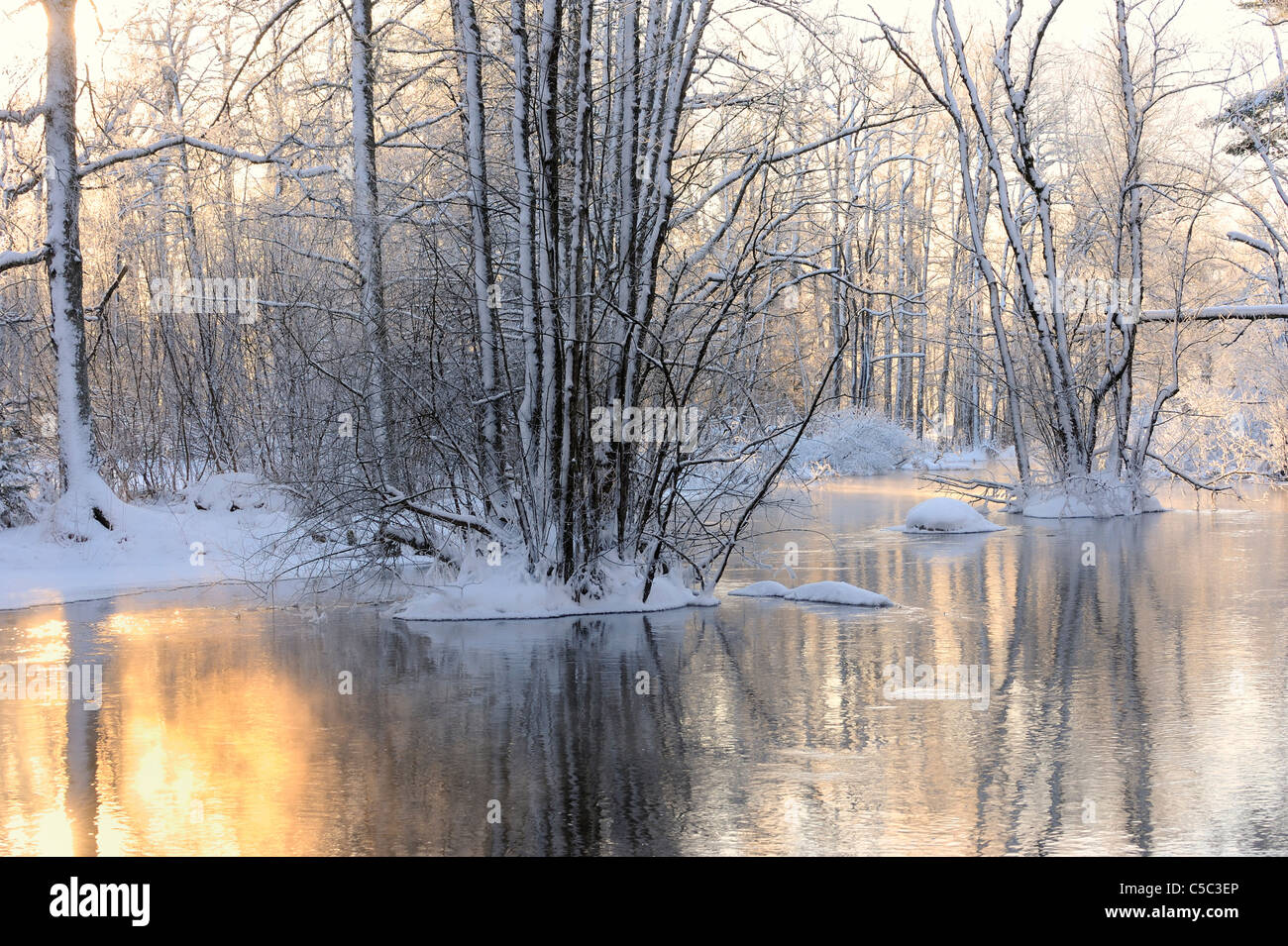 Scenic shot of placid lake with trees in snow - Stock Image