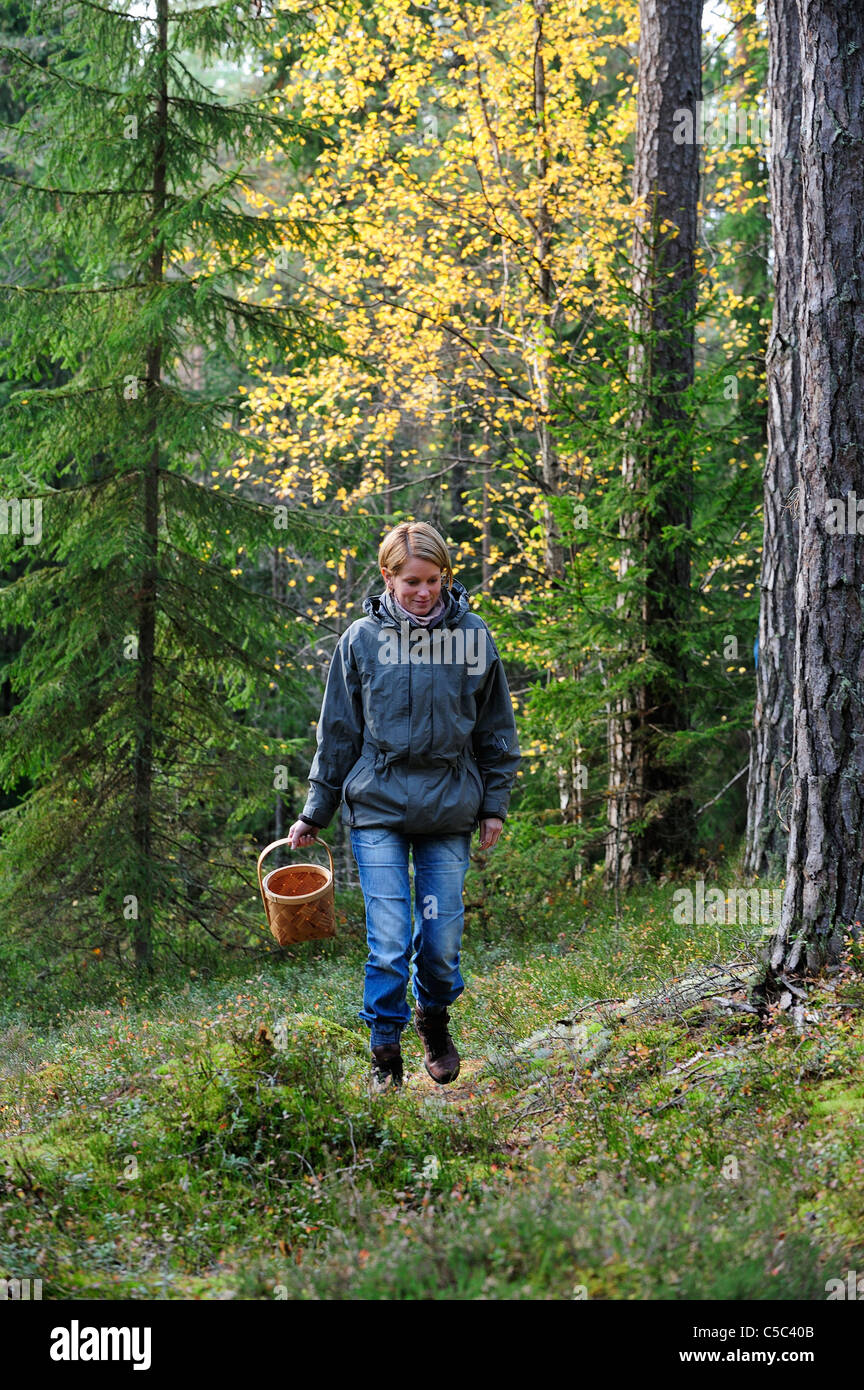 Woman walking with mushroom basket in the woods - Stock Image