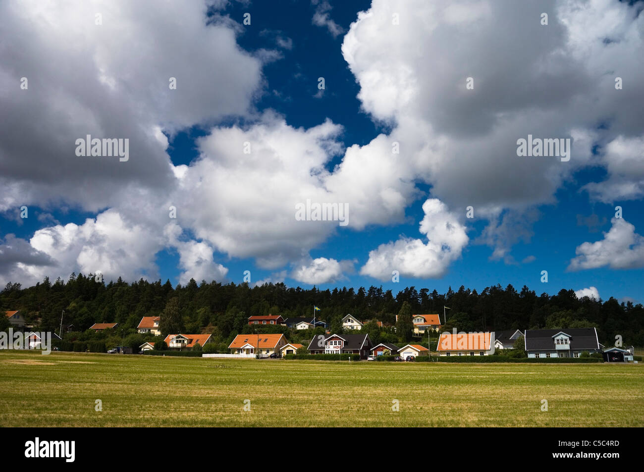Fields with country houses and trees in the background below fluffy clouds - Stock Image