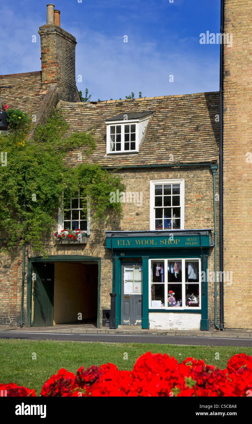 The Wool Shop Ely - Stock Image