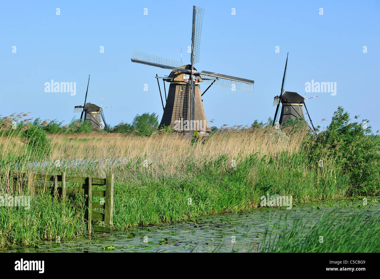 Thatched polder windmills at Kinderdijk, a UNESCO World Heritage Site at South Holland, the Netherlands - Stock Image