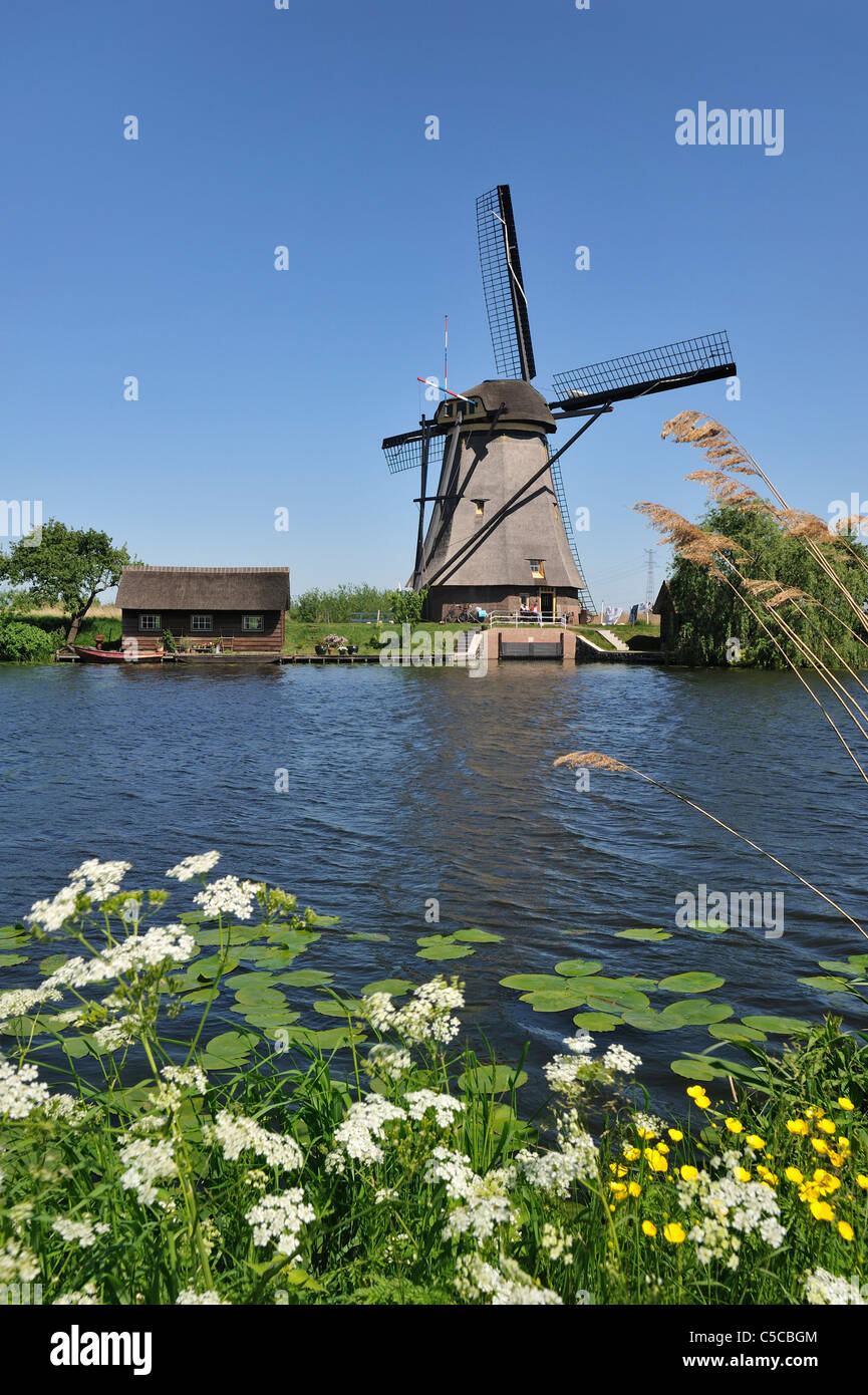 Thatched polder windmill along canal at Kinderdijk, a UNESCO World Heritage Site at South Holland, the Netherlands - Stock Image