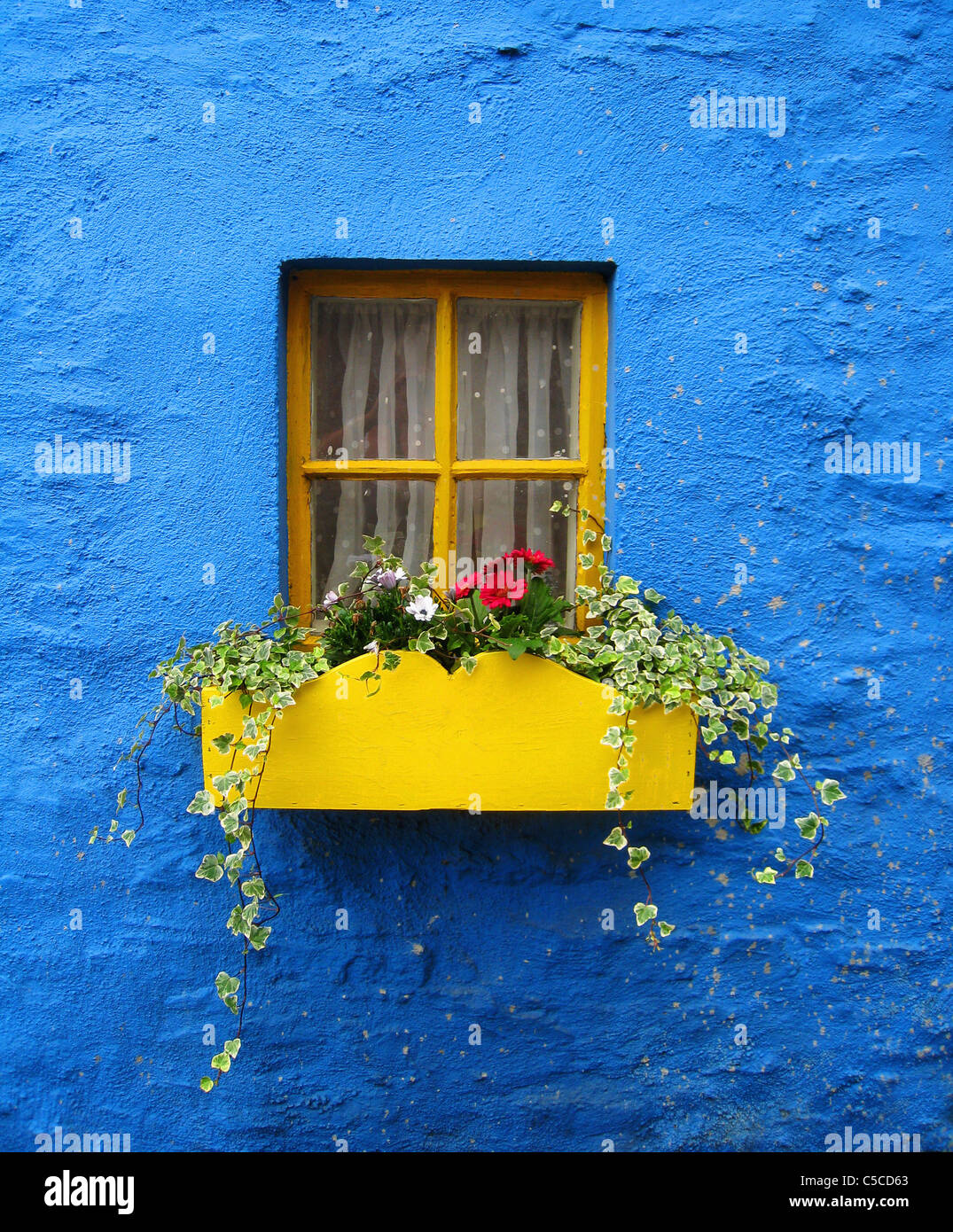 A Yellow Flower Box Under The Window Of A Blue House; Kinsale, County Cork, Ireland - Stock Image