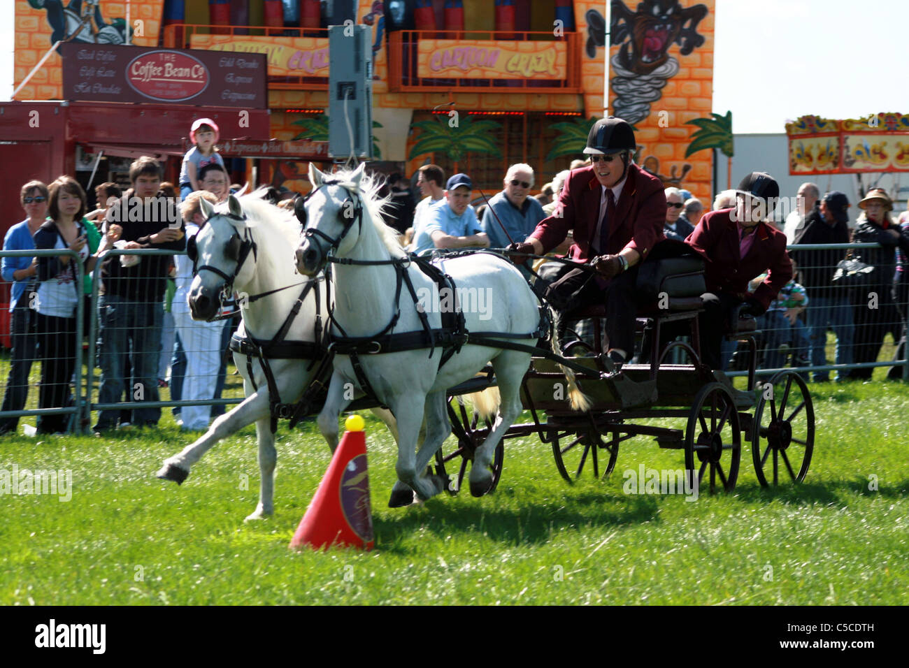 Scurry racing at Cheshire Show ground Tabley Cheshire England - Stock Image