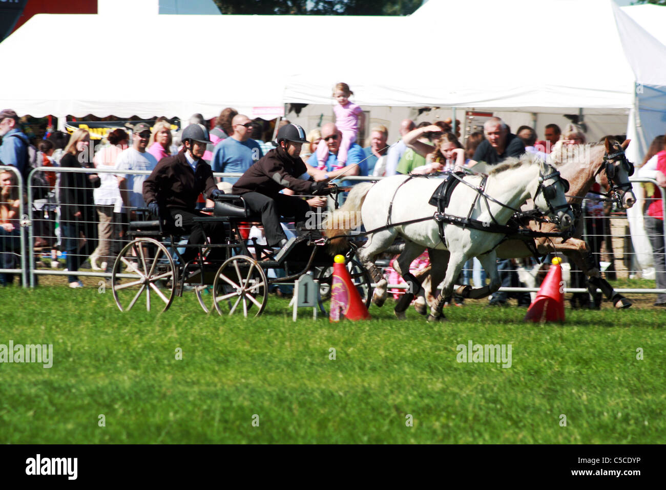 Scurry racing at Cheshire game and country show at Cheshire Show Ground Tabley Cheshire England - Stock Image