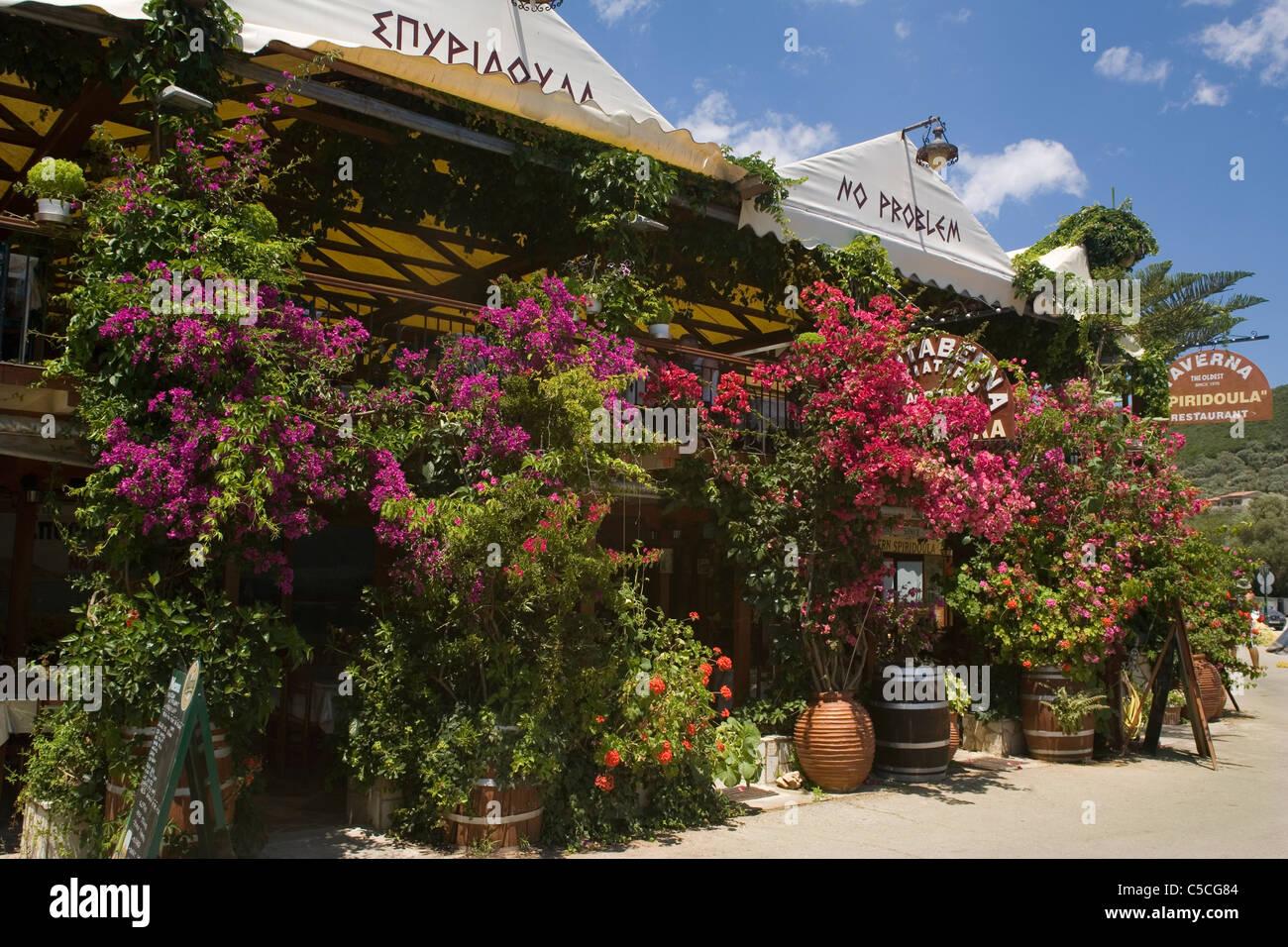 Greece Ionian islands Lefkada Sivota taverna - Stock Image