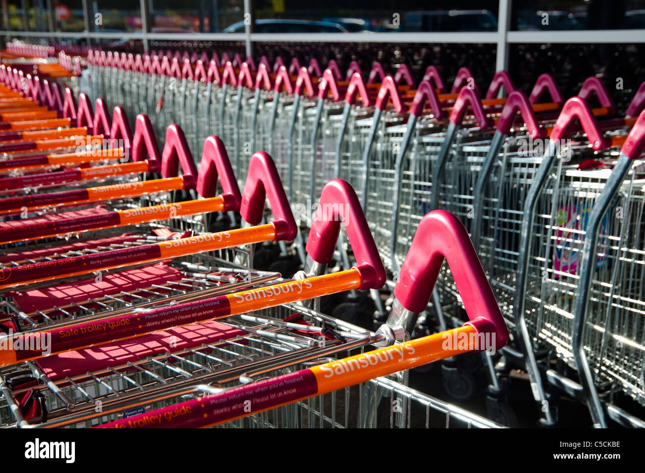 Rows / lines of Sainsbury's shopping trolleys. UK - Stock Image