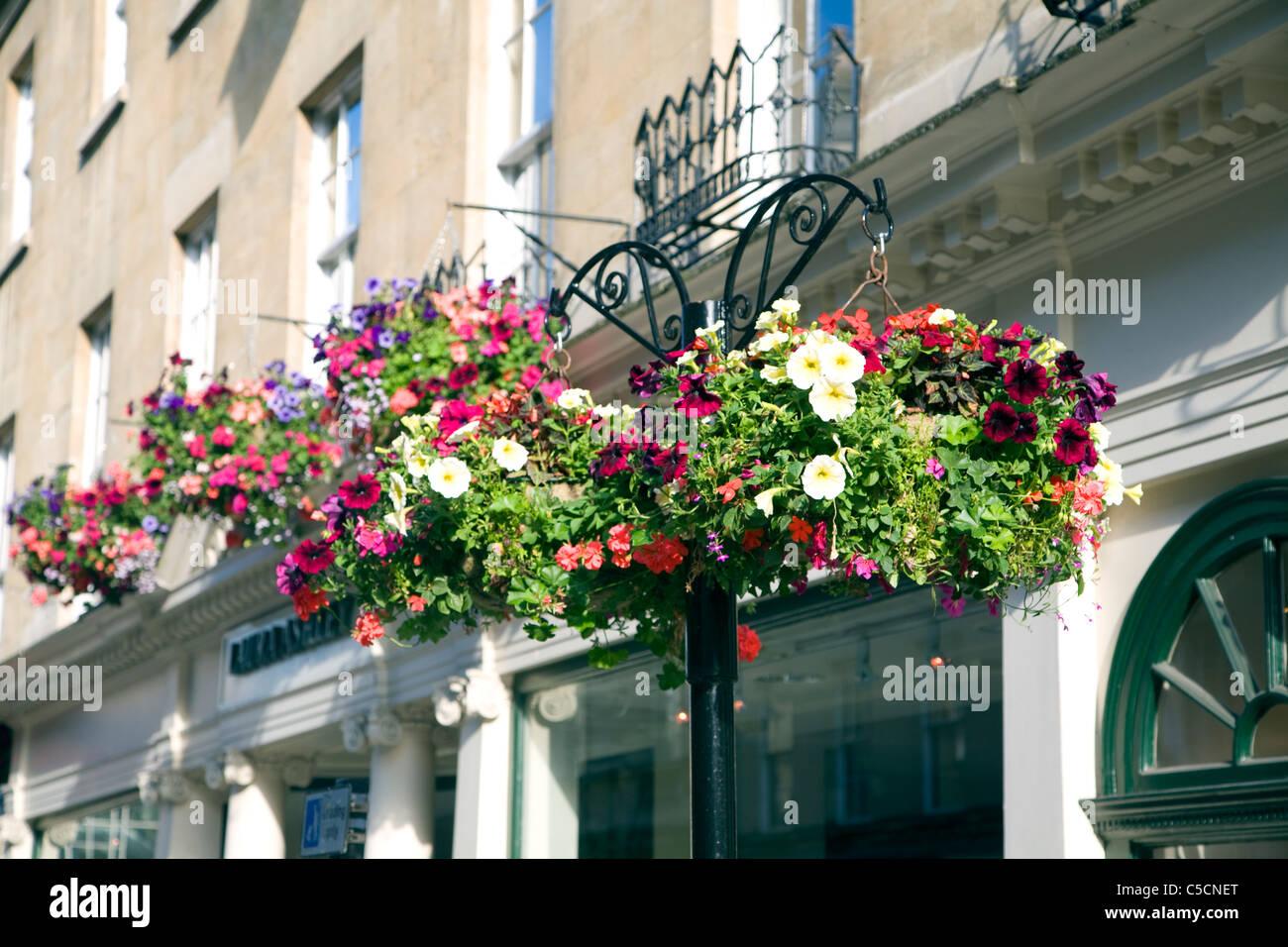 Hanging baskets of flowers, Bath, England - Stock Image
