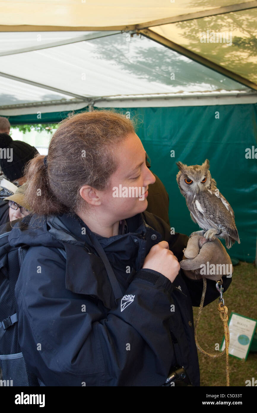 A woman holds a White faced scops owl at the Lambeth Country Show, London, England UK.  The owl is owned by Berkeley - Stock Image