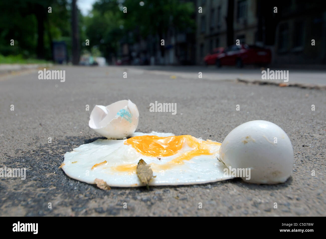 The divided egg which has fried on asphalt heated by the sun - Stock Image