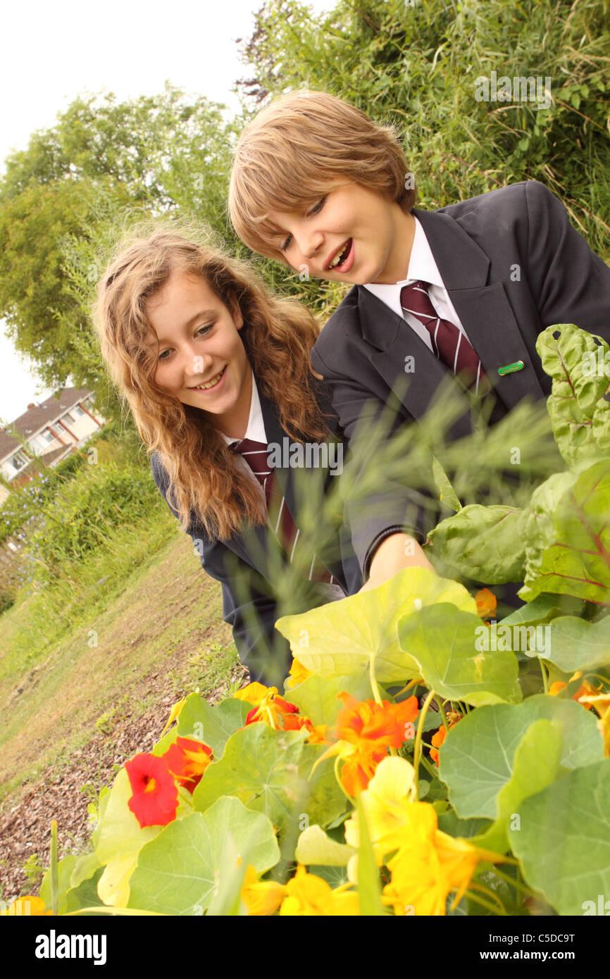 School pupils in secondary school garden project - Stock Image