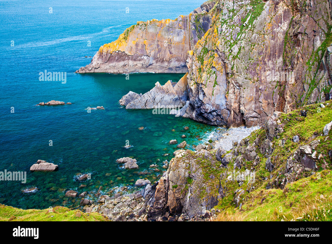 Rocky coastline and cliffs at Baggy Point a headland near Croyde, North Devon, England, UK - Stock Image