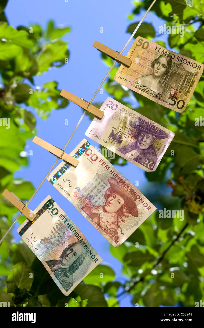 Close-up of banknotes clipped to the string against leaves and blue sky - Stock Image