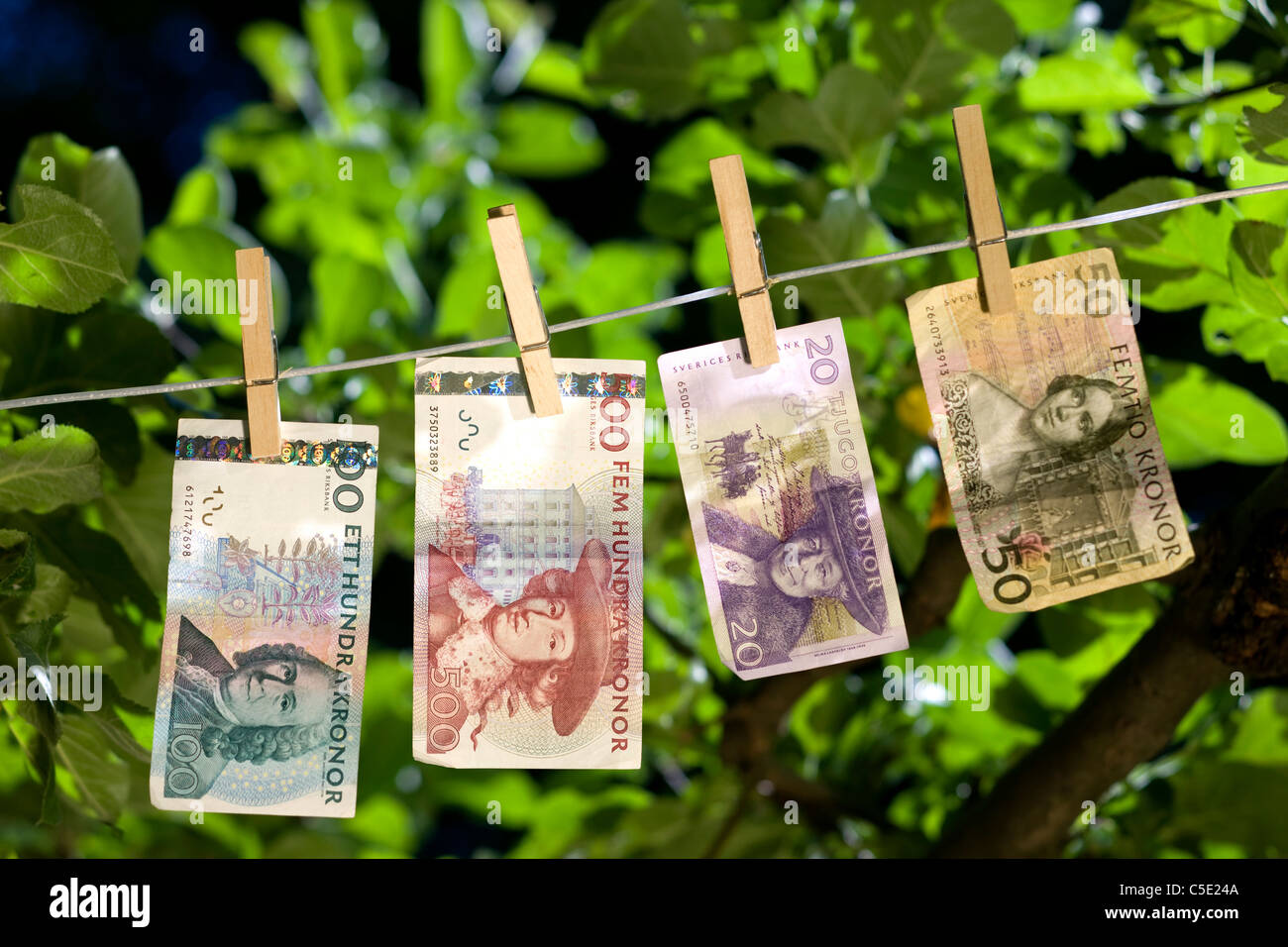 Close-up of banknotes clipped to the string against leaves - Stock Image
