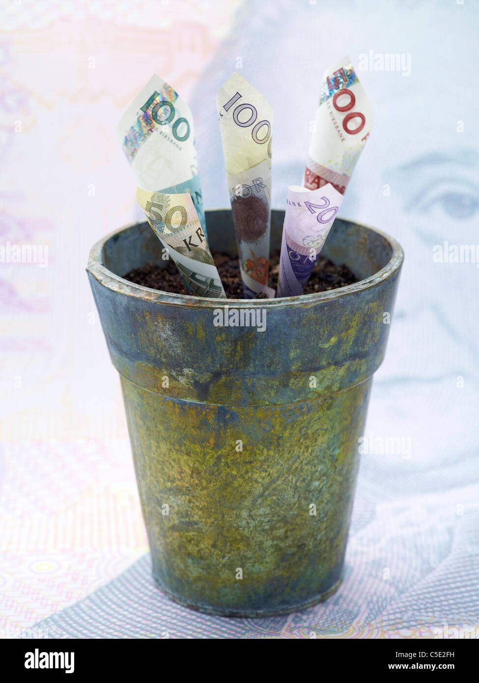 Close-up of rolled banknotes in the plant pot - Stock Image