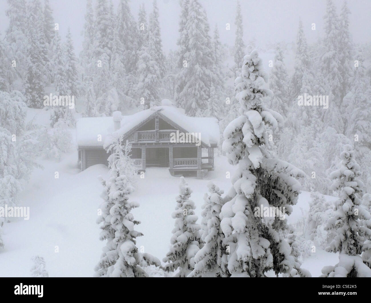 Snowed cabin and fir trees in winter landscape - Stock Image