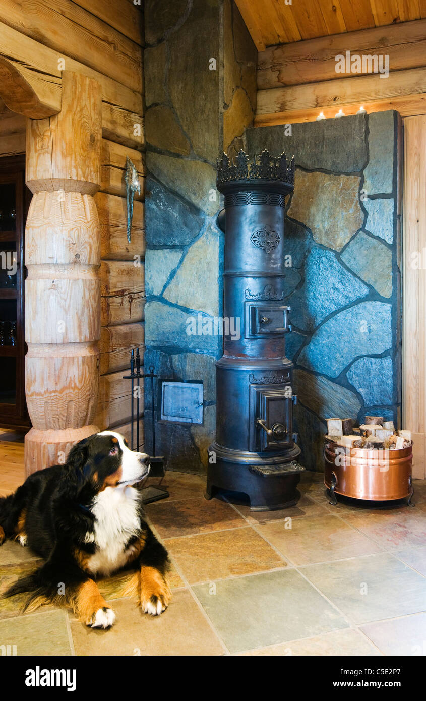 Dog resting on tiled floor in front of an iron stove - Stock Image