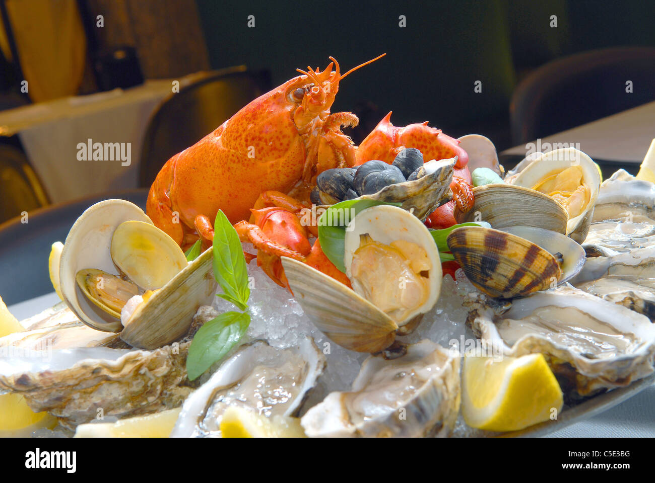 'A cocktail from seafood' with lobster and oysters - Stock Image