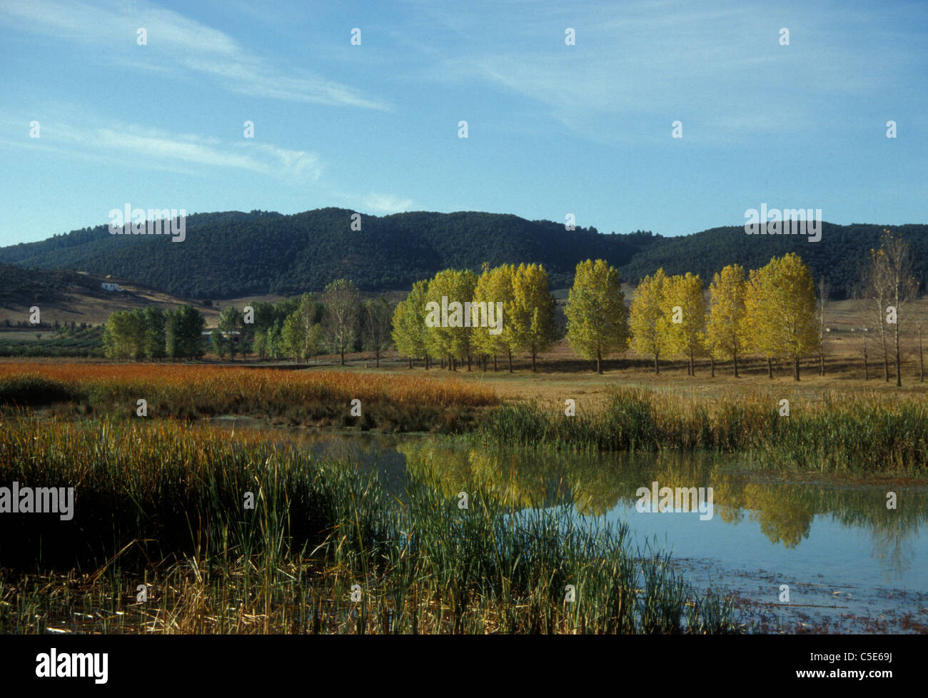 Dait Aoua, lake in the Middle Atlas of Morocco - Stock Image