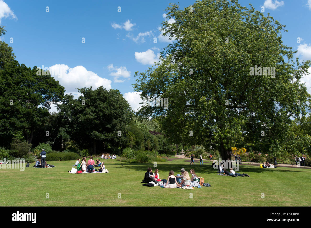 Young people having picnic in Hyde Park, London, England, UK - Stock Image