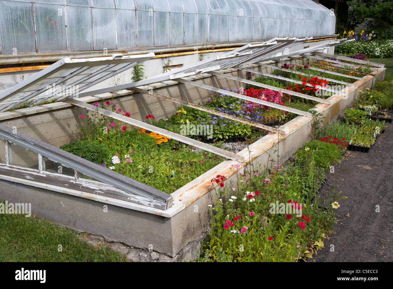 Growing In Cold Frame Stock Photos & Growing In Cold Frame Stock ...