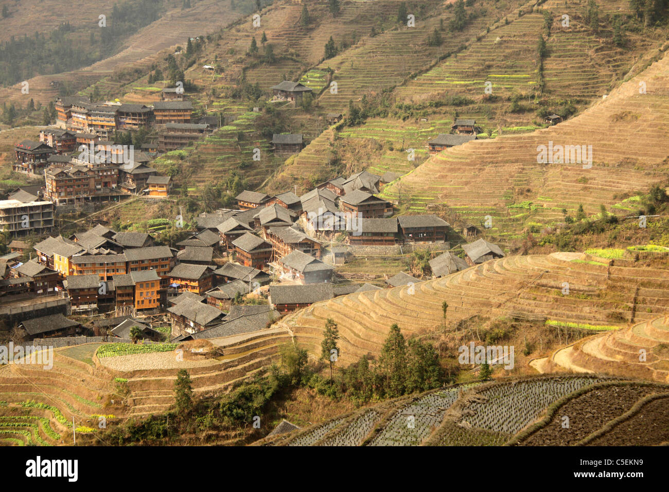 The world-famous rice terraces of Longji 'backbone of the dragon' and the village of Ping An near  Long - Stock Image