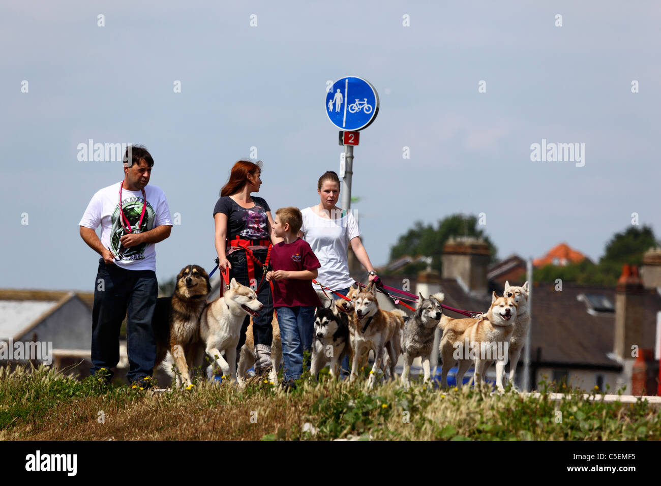 Family walking dogs along street in housing estate, St Leonards on Sea, East Sussex, England Stock Photo