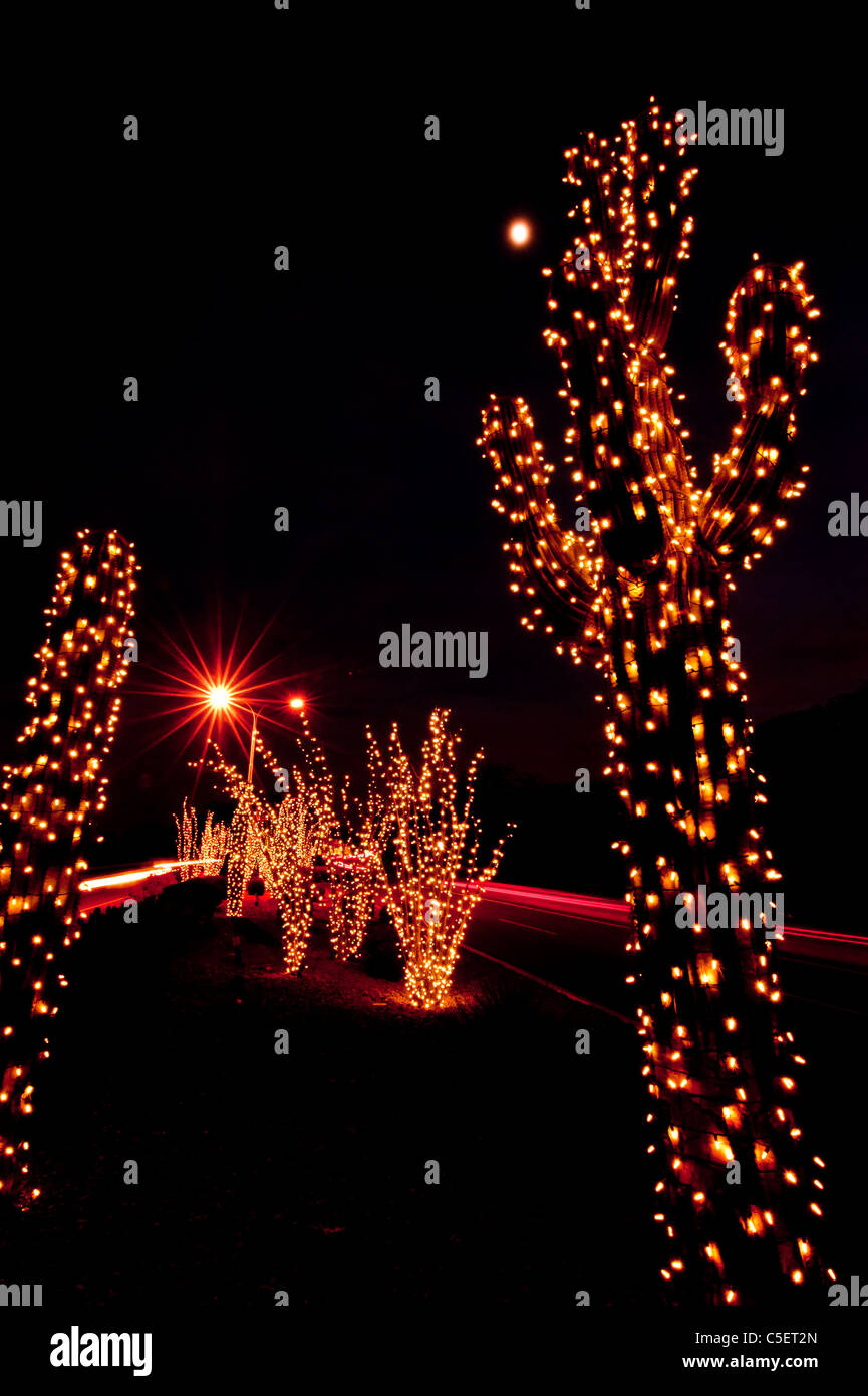 Christmas Lights On Saguaro Cactus Stock Photos
