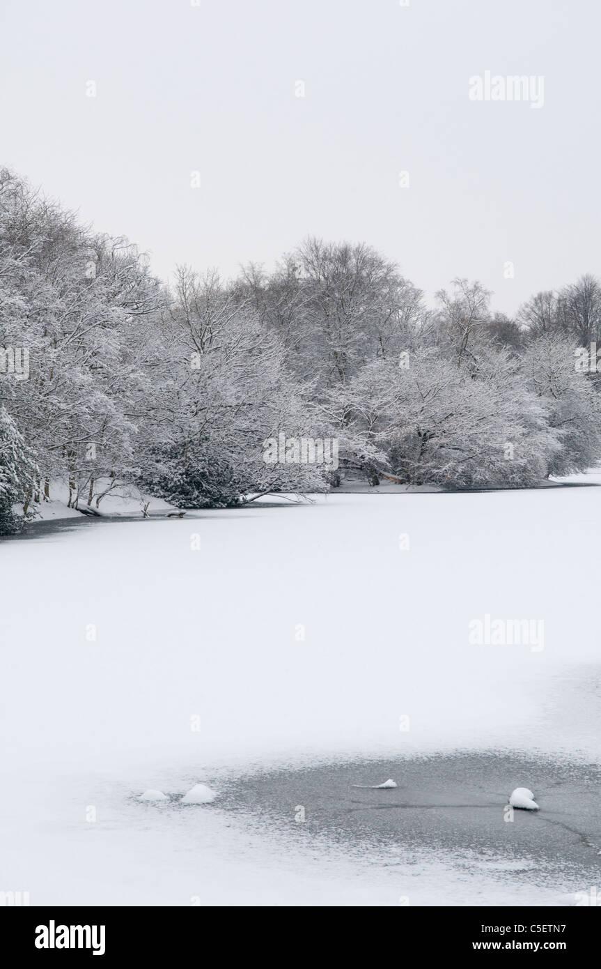 Frozen landscape - Stock Image