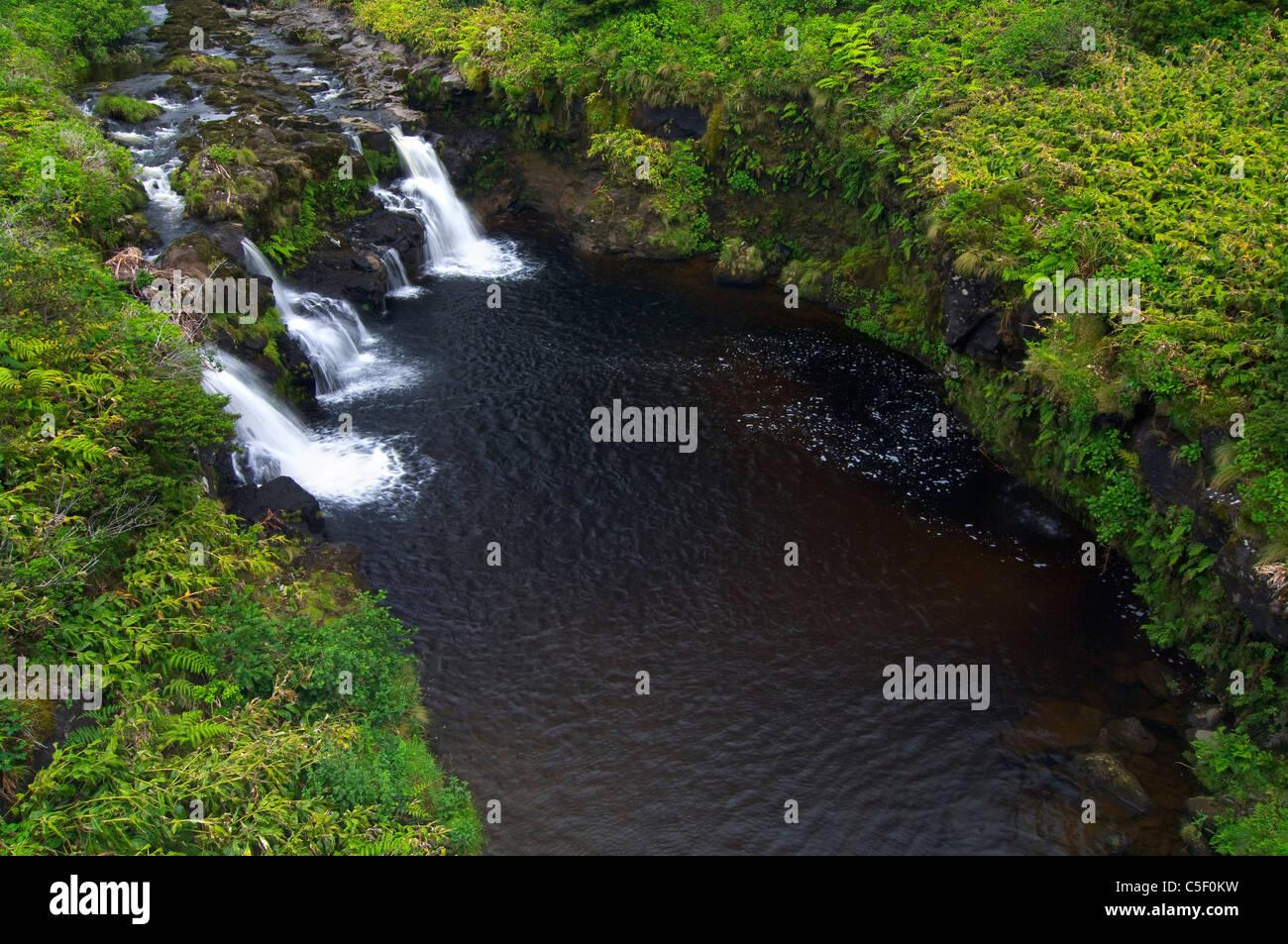 Cascades in Flores Island, Azores Stock Photo