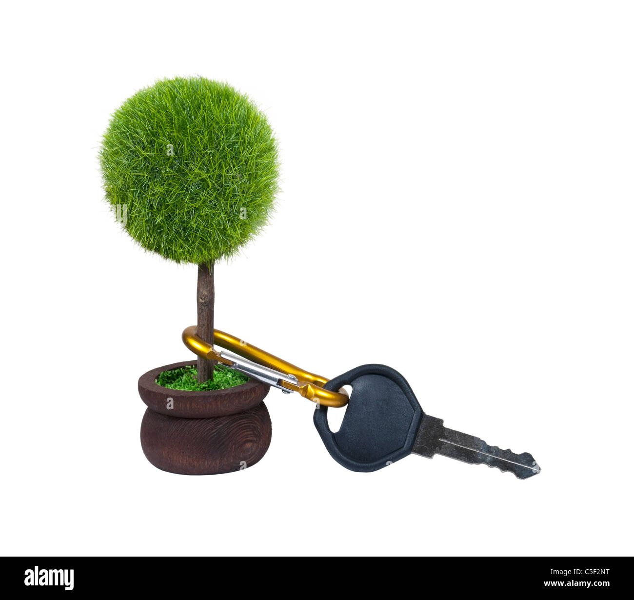 Efficient transportation shown by a car key attached to a potted tree - path included - Stock Image
