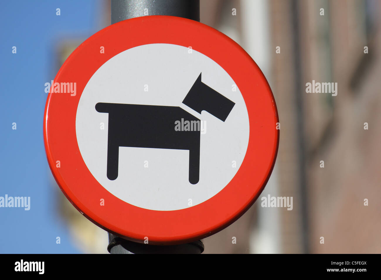a sign which means NO DOGS ALLOWED Stock Photo