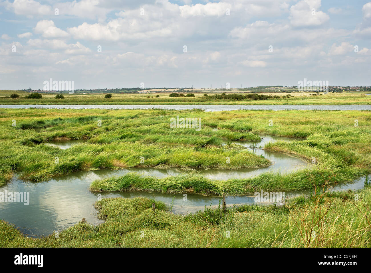 Benfleet Creek at West Canvey Marsh Reserve on Canvey Island. - Stock Image