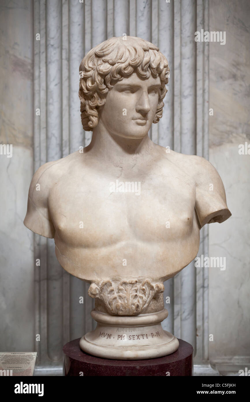 Bust of Antinous - Stock Image