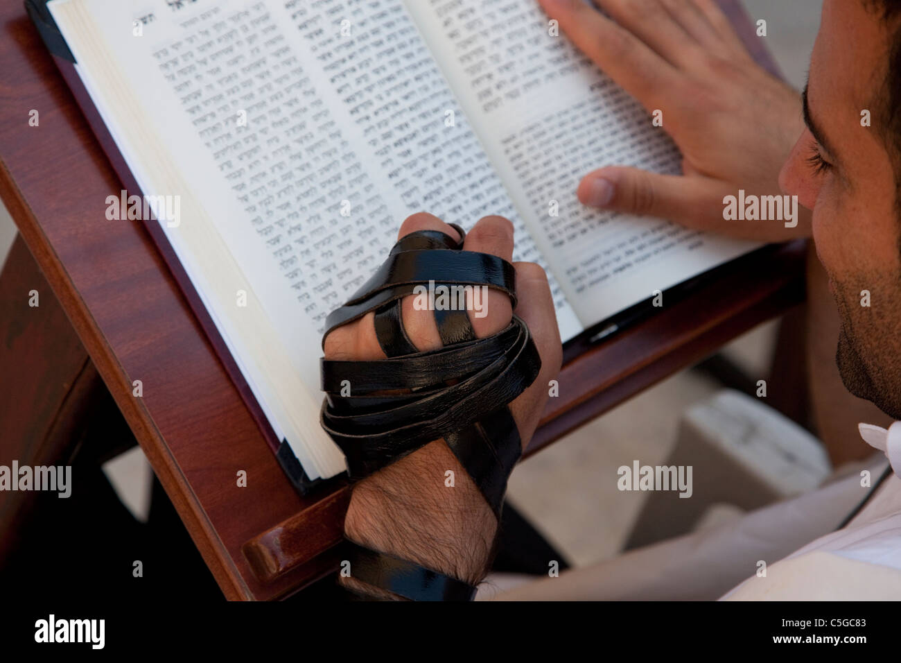 Jewish man wrapped with a Tefilin phylacteries reading the Siddur Jewish book of pray - Stock Image