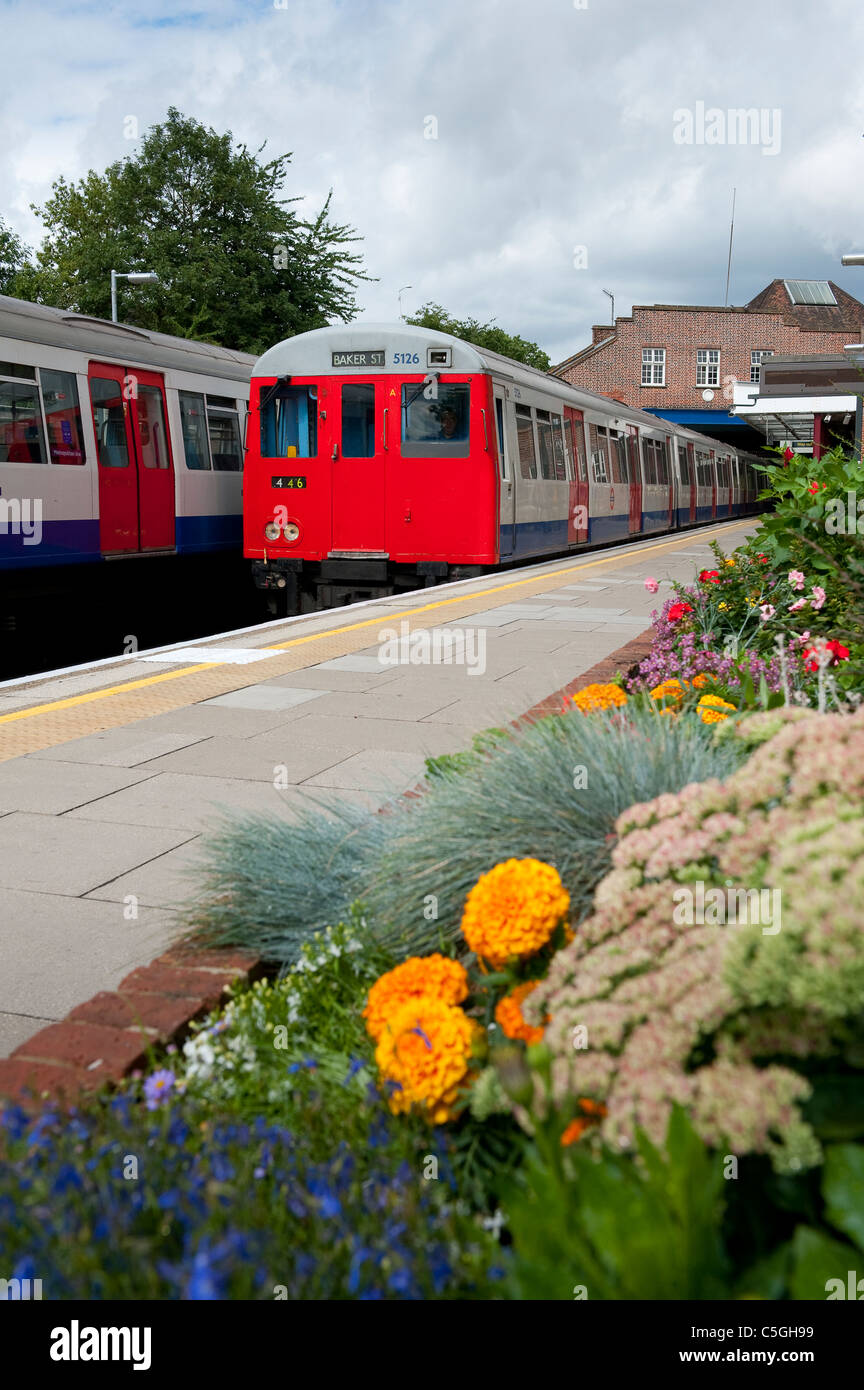 London Underground tube train traveling overground on the Metropolitan Line, London, England. - Stock Image