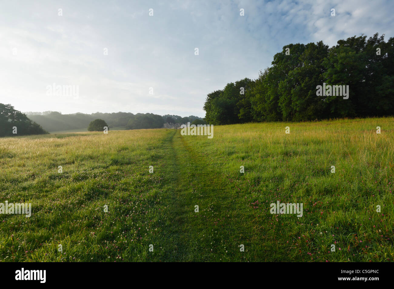 Path through meadow at Widcombe Hill, Bath. Somerset. England. UK. - Stock Image