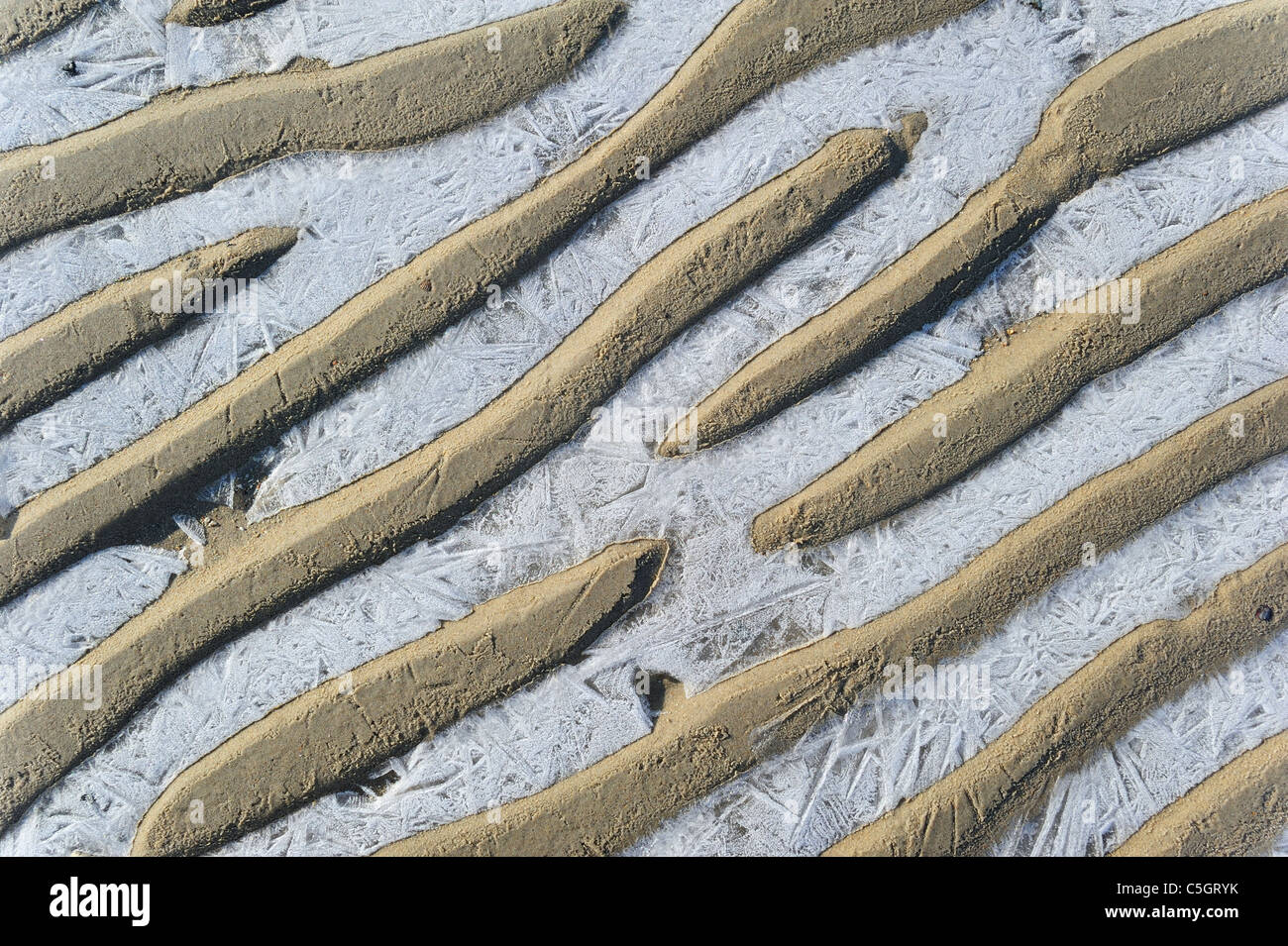 Pattern of sand ripples and ice on the beach during frost in winter - Stock Image