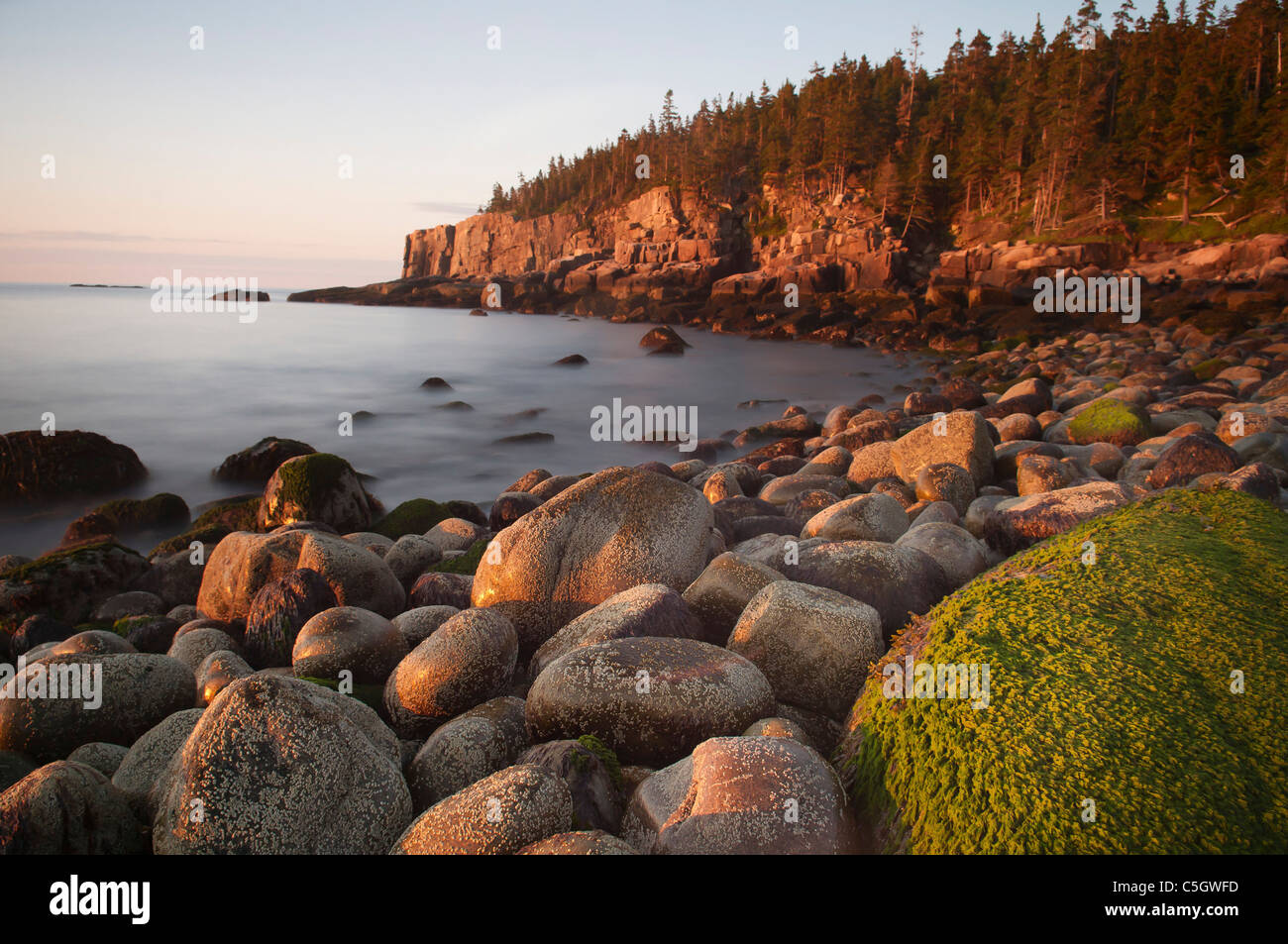 Otter cliffs early morning Acadia National park maine usa Stock Photo