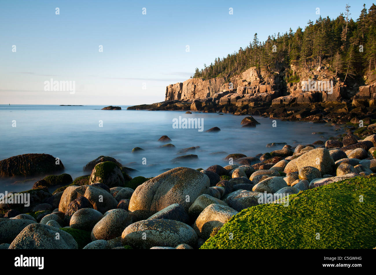 Otter cliffs early morning Acadia National park Stock Photo