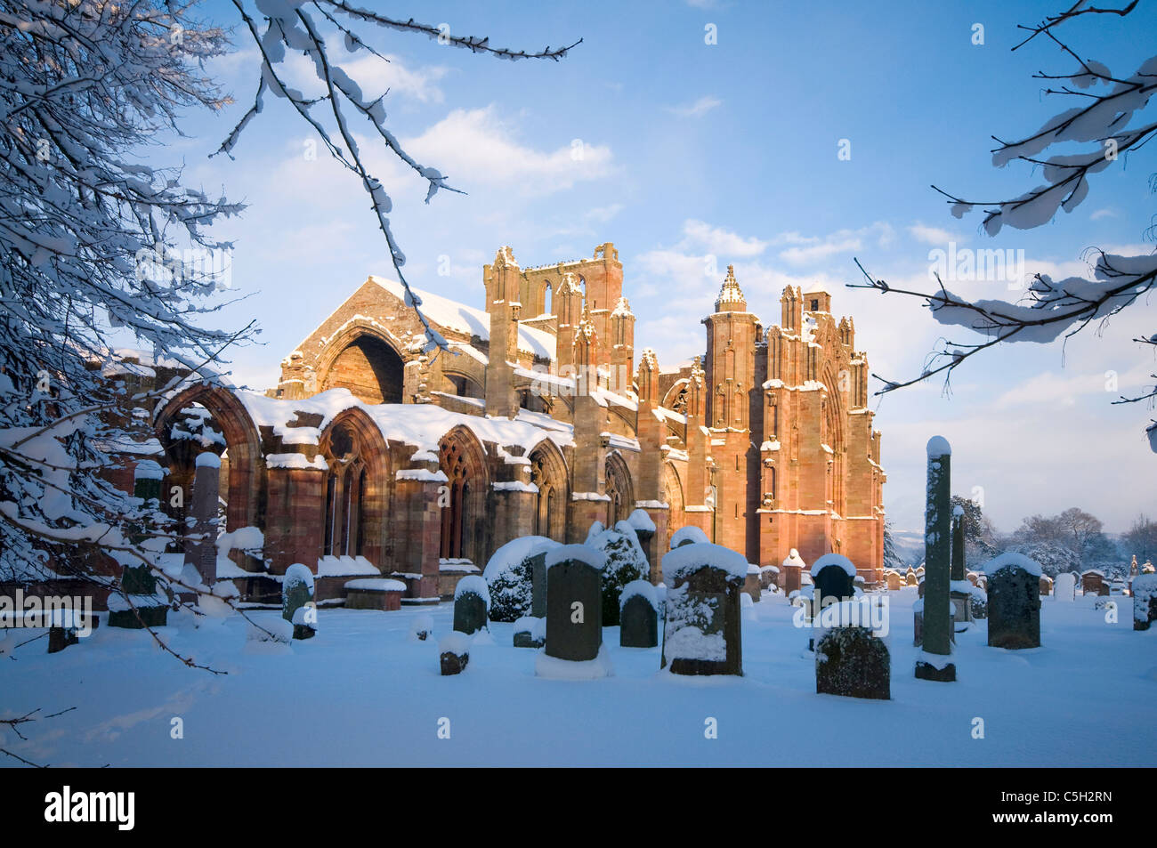 Melrose Abbey in snow - Stock Image