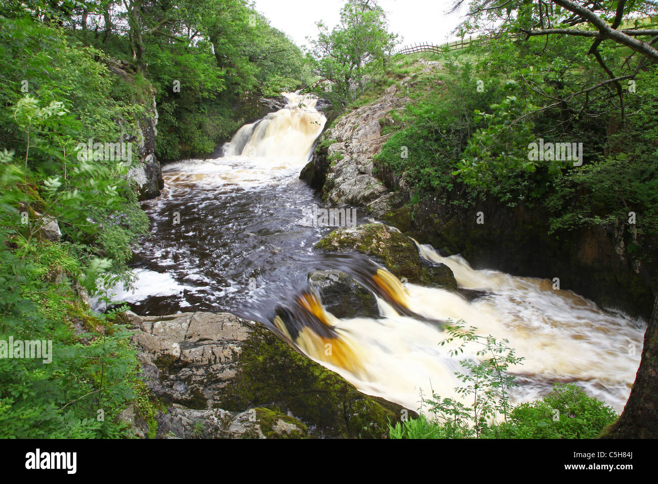 Beezley Falls, Ingleton Waterfalls Trail, Ingleton, Yorkshire Dales National Park, England, UK - Stock Image