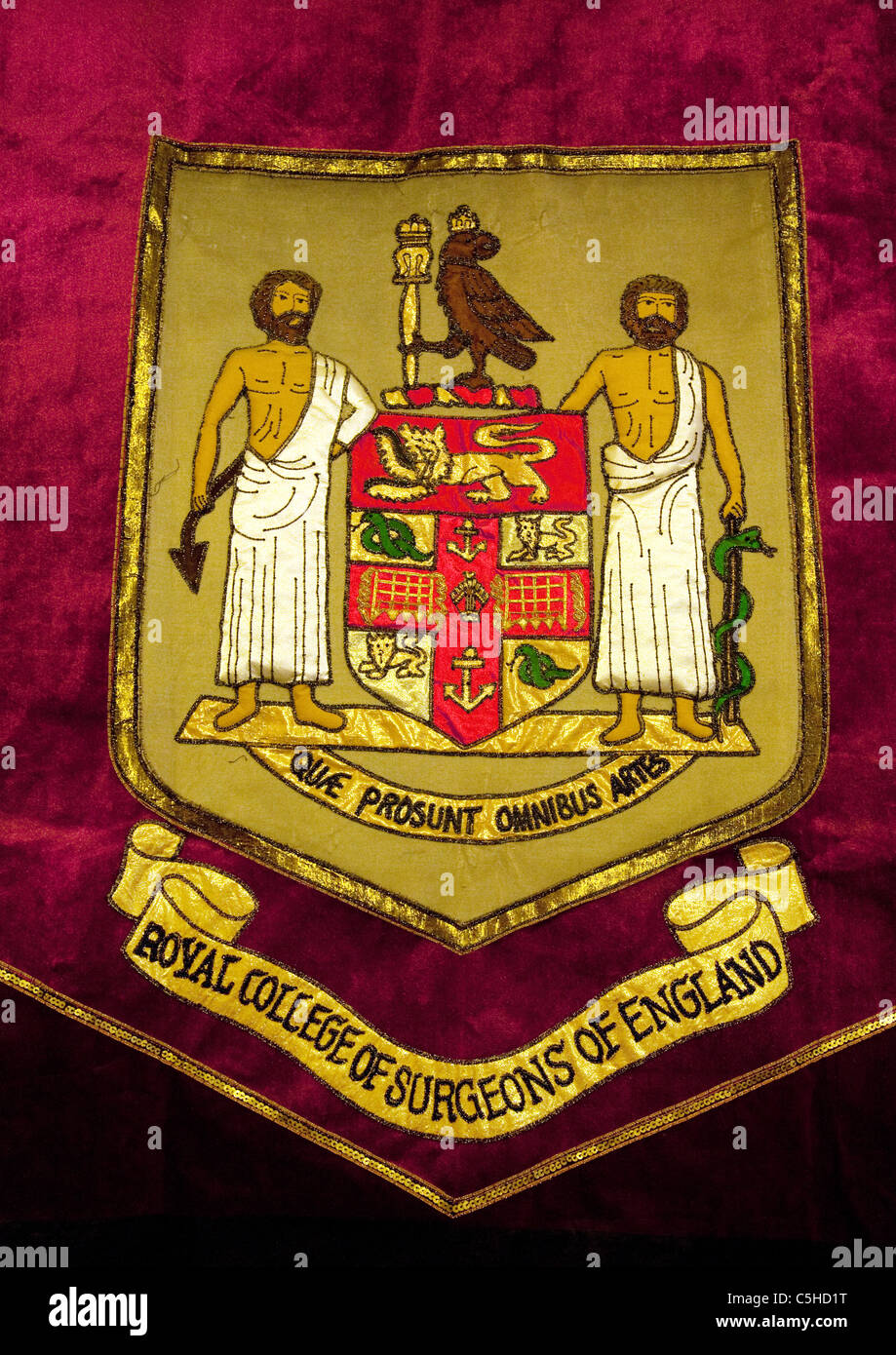 Tapestry of the coat of arms, the Royal College of Surgeons, London UK - Stock Image