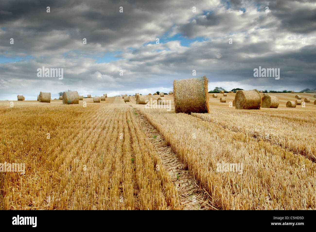 A bale of hay after the crop has been harvested, with a dramatic blue and grey sky. - Stock Image