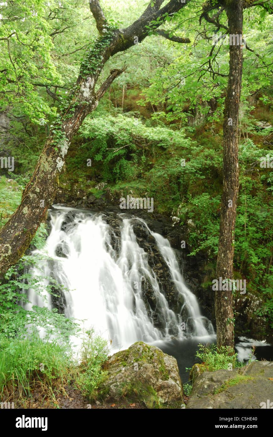 Rhaiadr Ddu waterfall, Afon Gamlan, Snowdonia, North Wales, UK - Stock Image