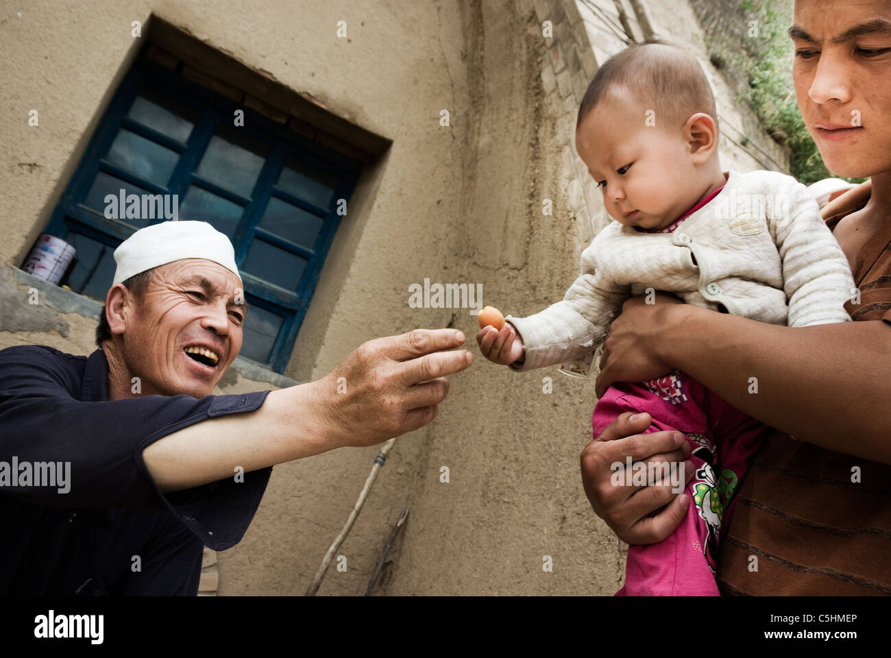 peasant giving an undersized apricot to his grandchild, ningxia, china - Stock Image
