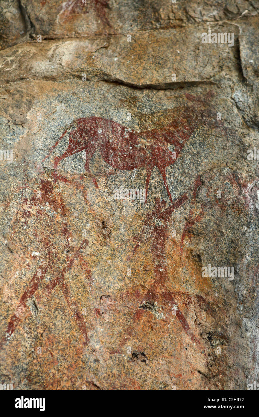 Ancient cave paintings within the White Rhino Caves at the Rhodes-Matopos National Park close to Bulawayo, Zimbabwe. - Stock Image