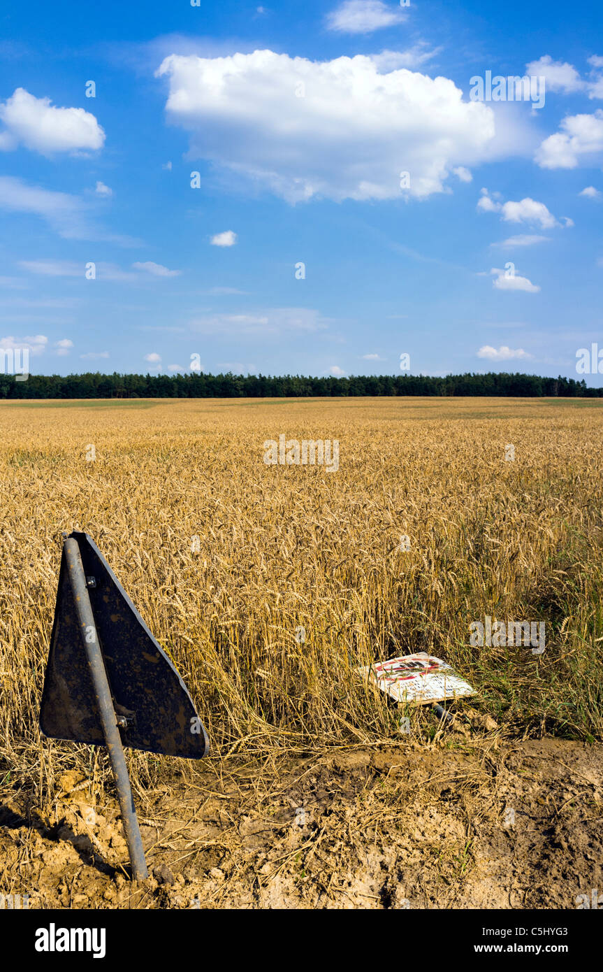 Road sign on cornfield, Germany - Stock Image