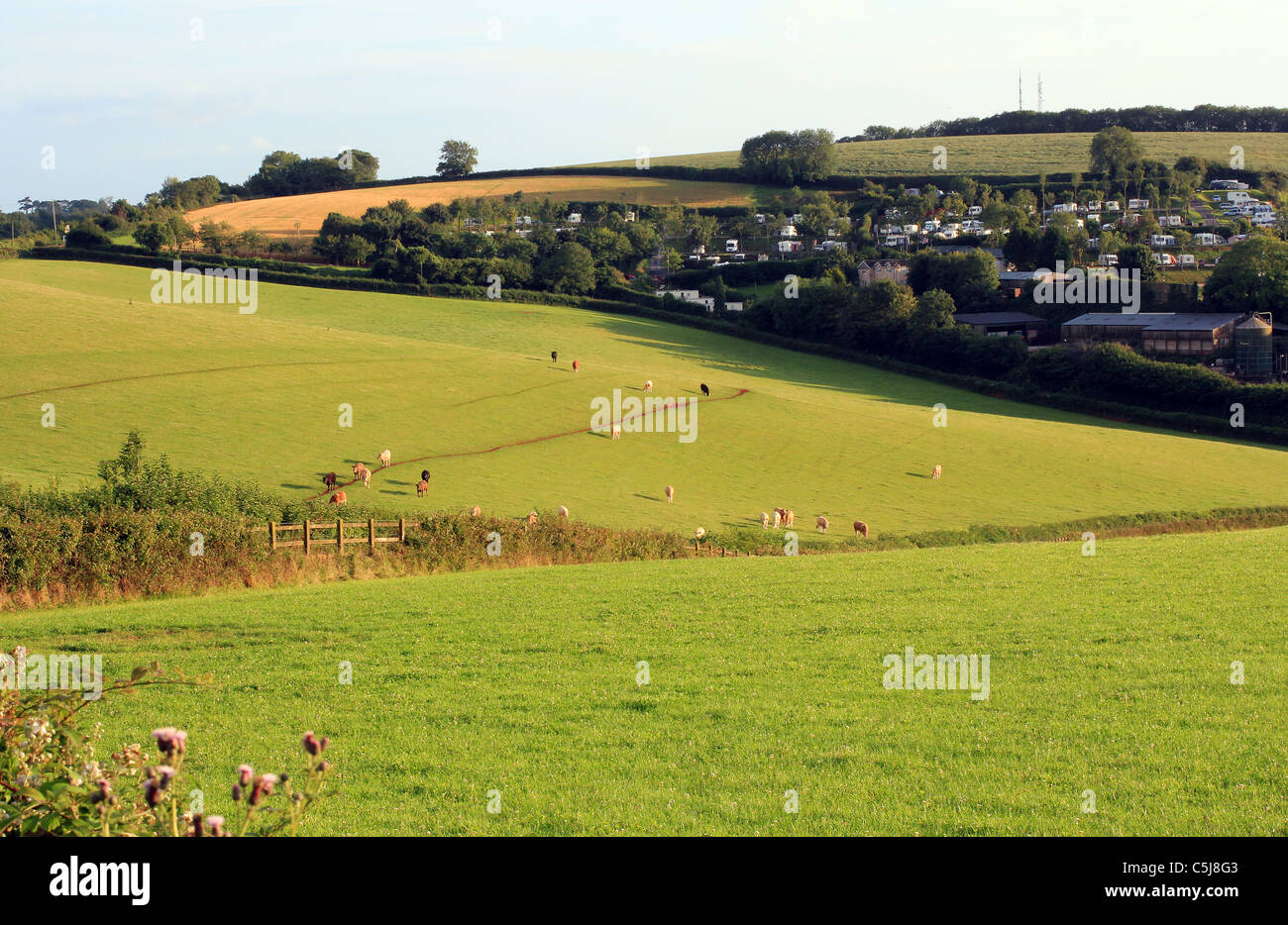 holiday camp in lee of rolling Devon fields,Harrow,Gate,fields Devon cove,Fence post and cloud,misc, fence, farming, - Stock Image